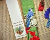 Spring Bluejay Blue Jay Bird & Red Tulips at Birdbath Bookmark w/ Antique Bronze Birdhouse Charm Art Photography Photo Laminated Bookmark