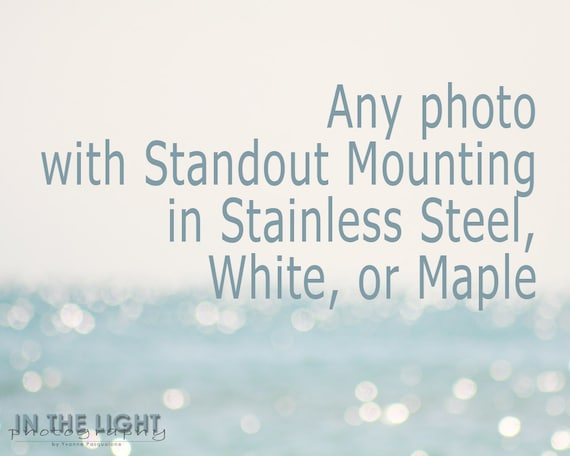 Any Photo - Stainless Steel, White, or Maple Standout Mounting - Choose the Size