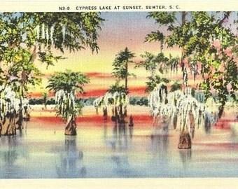 Vintage South Carolina Postcard - Cypress Lake at Sunset (Unused)