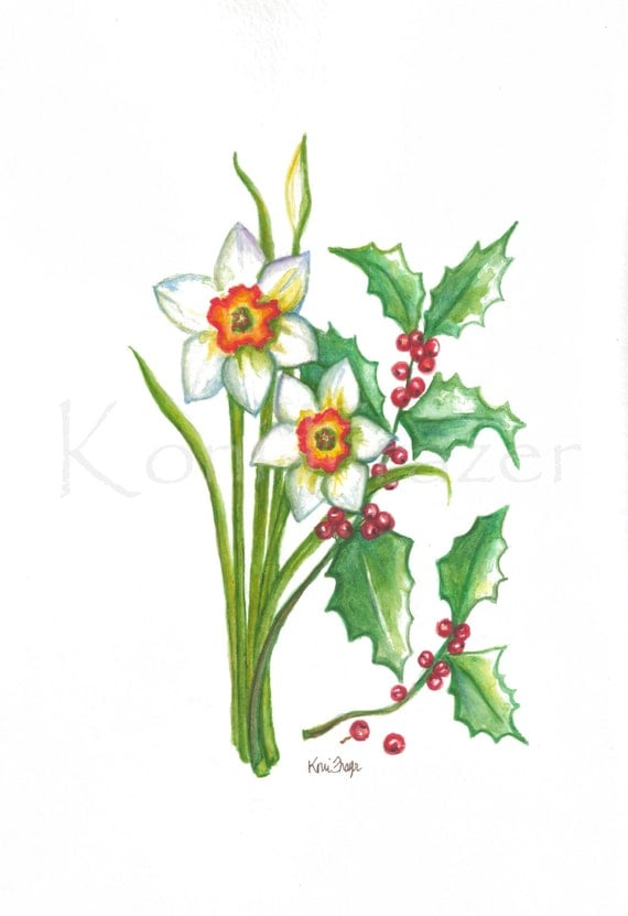 Narcissus and Holly December birthday flower original