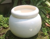 African Violet pot, large, round, white, self watering, modern, minimalist, Violet pot