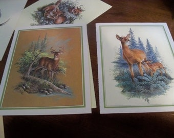 13  ready to frame harry moeller illustrations forest animals