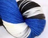 Finding Dory--Alley Cat--SW merino/nylon