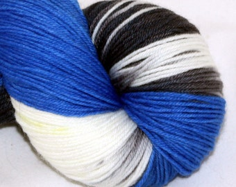 Finding Dory--Alley Cat--SW merino/nylon