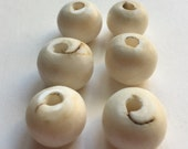 Drilled Shell Beads - 6 Beads