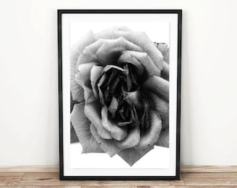 PRINTABLE wall art. Rose Black 8x10 and 11x14. botanical, floral, room decor, modern, romantic, black and white botanical