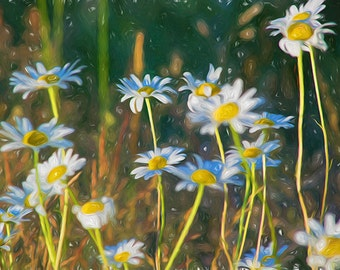 DIZZY DAISIES No.3 - whimsical spring and summer wall art, sunny daisies dancing on a breeze