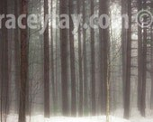 Rustic Cabin Decor, Canvas Wall Art, Winter, Pine Forest Photography on Canvas, Large Canvas Art