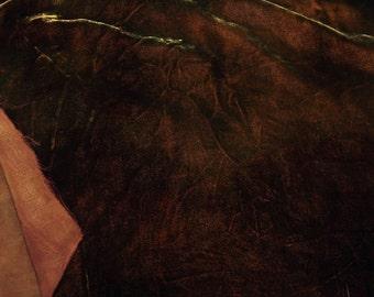 Velvet, hand-dyed silk-backed rayon velvet, Chino Brown