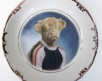 Portrait Bowl.   Johnny Highland, school portrait  5.65""