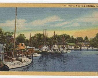Yacht Fishing Boats Harbor Cambridge Maryland postcard