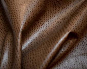 Ostrich Vinyl Swavelle Mill Creek Fabric