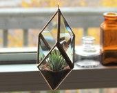 Geometric Air Plant Holder Stained Glass Hanging Terrarium Clear and Copper Colored Diamond Planter Glass Vase