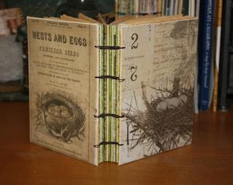 Birds Nest Journal, Bird watcher book, Wedding guest book, bird egg, baby book, handmade Gift, vintage inspired journal, bound book
