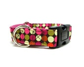 """Houndstown 1"""" Colordots Buckle or Martingale Collar, Any Size"""