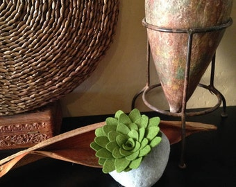 simple stone and succulent plant