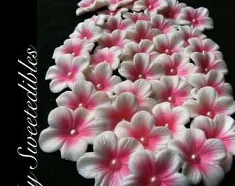 Cake Decorations White Gumpaste Blossoms with Deep Pink