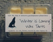 FEBRUARY SPECIAL!!! Winter is Coming Soy Blend Wax Tarts (Game of Thrones/A Song of Ice and Fire)