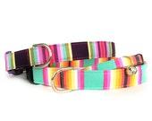 Tula Stripes Collar