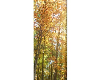 Autumn Trees Canvas - Large Canvas - Nature Canvas - Large Wall Art - Fall Trees - Orange Green - Rustic - 20 x 60 Canvas - Woodlands