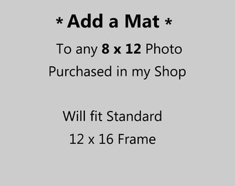 8 x 12 Photograph Matted to 12 x 16