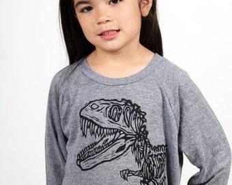 Dinosaur On Children's American Apparel Pullover Tri Blend Grey or Blue 2T, 4T, 6T, 8Y, 10Y, 12Y