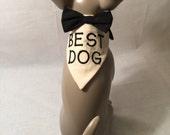 Best Man Wedding Bandana, Personalized wedding bandanas, custom dog bandana, wedding party ideas, dog wedding party ideas