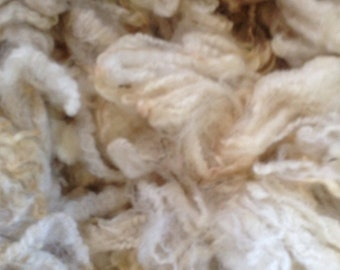 Romney Raw Fleece White Wool Fleece Spinning Fiber Doll Hair