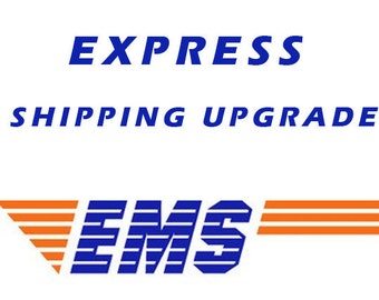 EXPRESS DELIVERY worldwide only 20usd