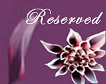Reserved for Elizabeth Fischel