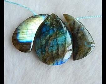 Necklace Beads,3 PCS Labradorite  Gemstone  Pendant Bead Set,30x14x6mm,34x24x7mm,18.66g