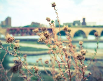 Minneapolis Minnesota Stone Arch Bridge Weeds Urban Landscape