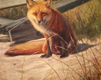Beach Bum-Red Fox (original oil painting)