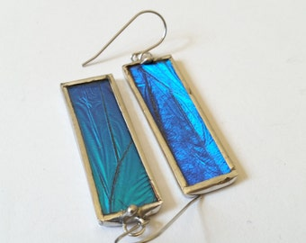 Real Blue Morpho Butterfly Wing Earrings