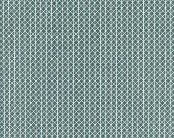 Netorious in Camp Out, Cotton+Steel Basics, Alexia Abegg, RJR Fabrics, 100% Cotton Fabric, 5000-012