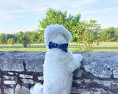 Navy Blue Anchor Dog Nautical Bow Tie Collar