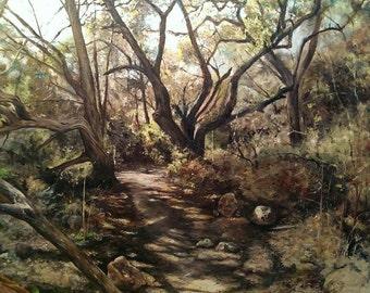 Austin Texas Landscape-Original Oil Painting