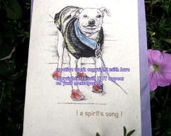 old/senior dog...so very special/ white mutt dog/ storybook/personalize/sentimental cards/unique empathy condolence cards