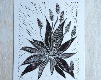 Aloe Vera, Black & White Linocut Print