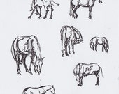 Original Sketch of Horses...