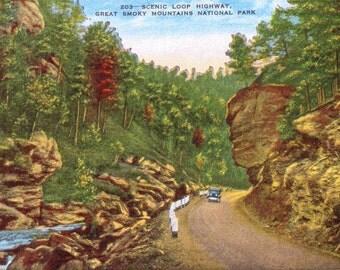 Smoky Mountains, Scenic Loop Highway, National Park - Vintage Postcard - Postcard - Unused (A10)