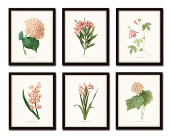 Pink Botanical Print Set No. 2, Redoute Botanical Prints, Giclee, Art Print, Antique Botanical Prints, Pink Flower Prints, Flower Art