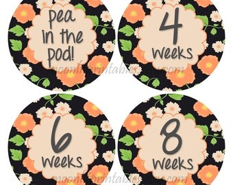Pregnancy Week Stickers, Belly Bump Countdown, Pea in the Pod, 4 to 40 weeks, Baby Tracker Stickers Maternity Stickers Weekly Sticker (718)