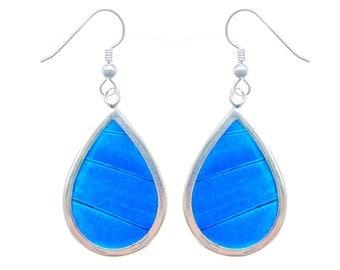 Real Butterfly Wing Sterling Silver Earrings - Blue Morpho Butterfly Wing Teardrop Sterling Silver
