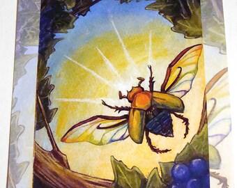 Clearance Sale: Scarab Beetle Print, Rainbow Decor, Insect Art, 8x10 Art, Animism Tarot Deck