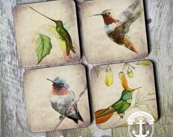Coaster Set   Hummingbird     Bird Nature Rustic Style   Set of 4 Cork Back   Options at Checkout