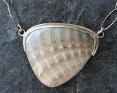 Fossilized Clam Shell Jewelry Seashell Necklace