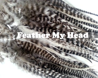 "15 Pc Wide Accent Feather Hair Extenions  - 7"" to 11"" Inch (18-28cm)  Long - Natural Grizzly / White"