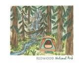 12x18 Prints: Redwoods, Sequoia & Yosemite