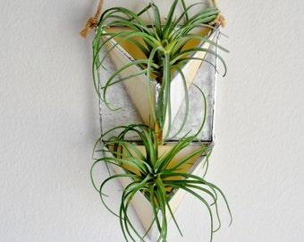 Hanging planter, Wall Plant Holder Terrarium, Vertical Garden, Stained Glass Geometric Plant Holder, Glass Terrarium by jacquiesummer
